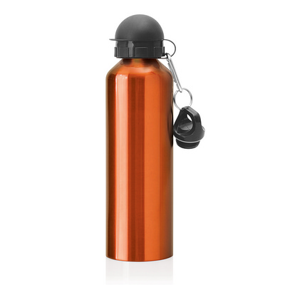 Stainless Steel Drink Bottle 750ml (M245I_GL_DEC)