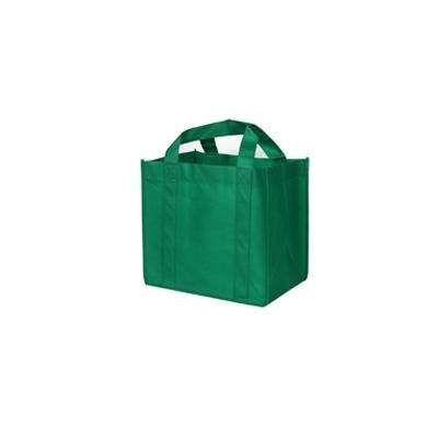 Non Woven Bags (B06_PENA)