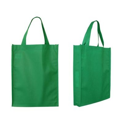 Non Woven Bags (B07_PENA)