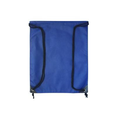 Non Woven Bags (B15_PENA)