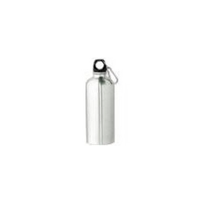 600ml Stainless Steel Bottle (M17_PENA)
