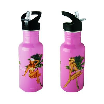 500ml Stainless Steel Water Bottle (M35_PENA)
