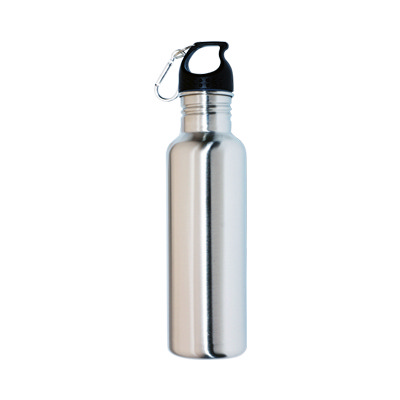 750ml Stainless Steel Bottle (M37_PENA)