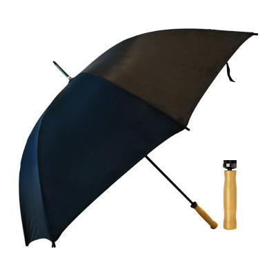 Budget Umbrella (T19_PENA)