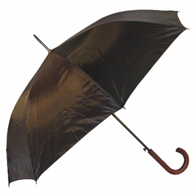 Euro   Umbrella (WM022_PERZ)