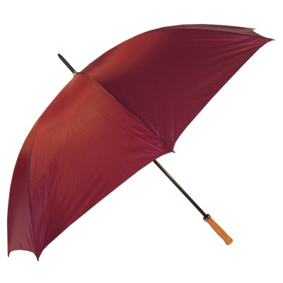 Pro  Umbrella (WG002_PERZ)