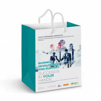 Medium Laminated Paper Carry Bag  Full Colour - (printed with 4 colour(s))