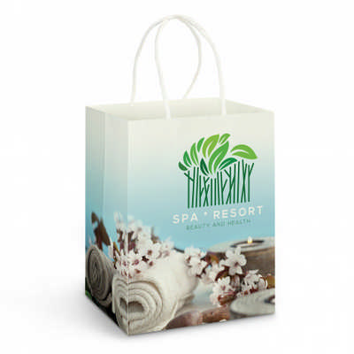 Large Paper Carry Bag - Full Colour - (printed with 4 colour(s))