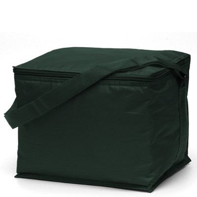 Basic 6 pack Cooler Green (2301GN_TVG)
