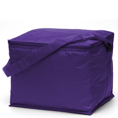 Basic 6 pack Cooler Purple (2301P_TVG)