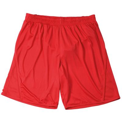 James & Nicholson Team Shorts Junior