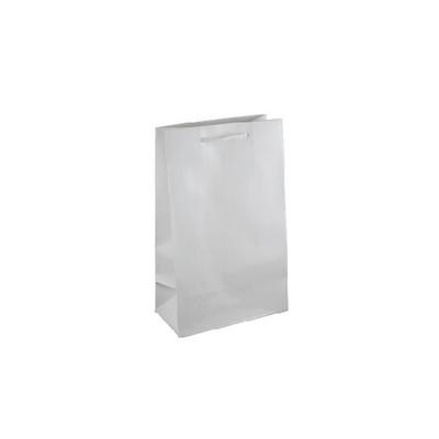 Small White Gloss Laminated Paper Bag Printed