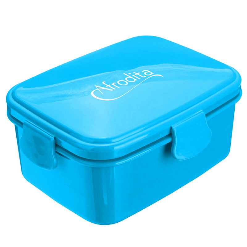 700Ml Divided Lunch Box