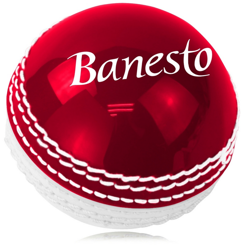 Double Color Leather Cricket Ball