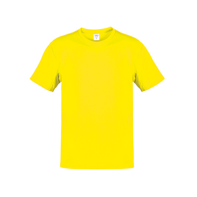 Adult Color T-Shirt Hecom