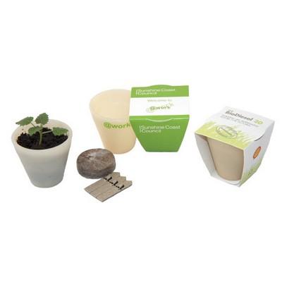 Seed Sticks - Ecopot